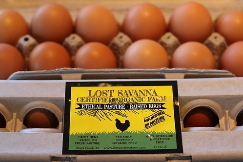 Organic Pasture Raised Eggs