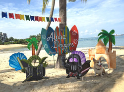Aloha-Doggies-Beach-Party-playarea