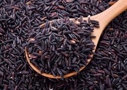 organic-black-rice-500x500_500x