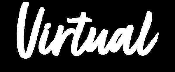 virtual-WT.png