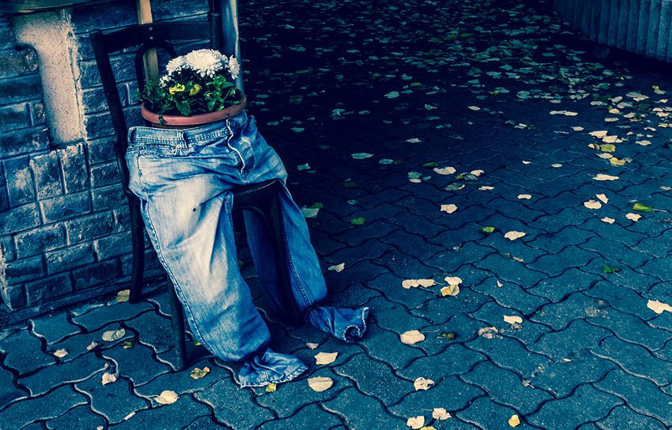 Flowers in Blue Jeans