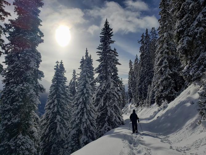 Part 2: Arosa, Switzerland