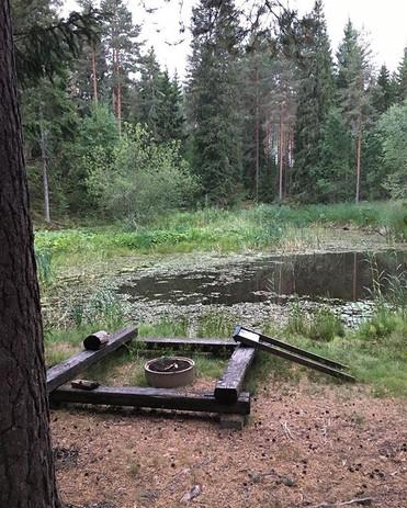 #metsälampi #meditaatiometsässä #metsäky