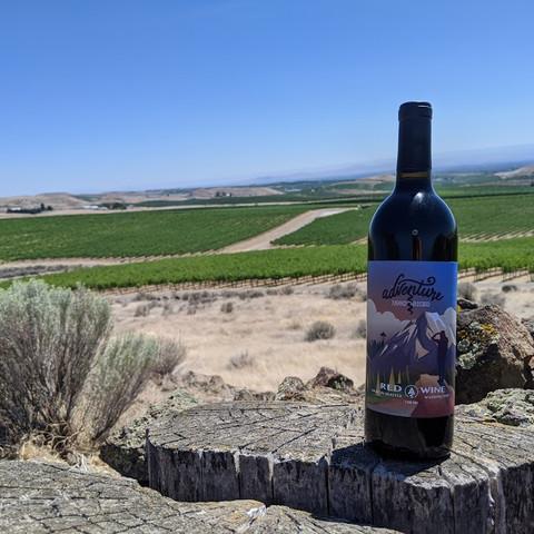 Adventure To The Vineyard