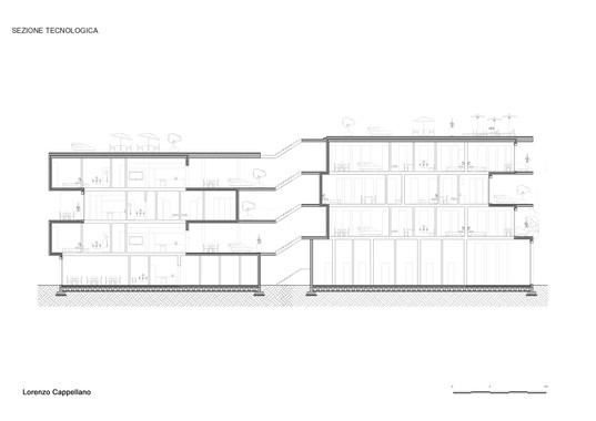 Tav 38- Final section - Cappellano.jpg