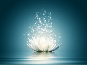 NPC : New Particles of Consciousness / Nouvelles Particules de Conscience