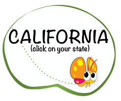 california BUTTONS-01.png