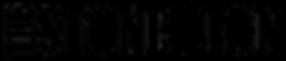 The Stone Lion Rectangle logo black.png
