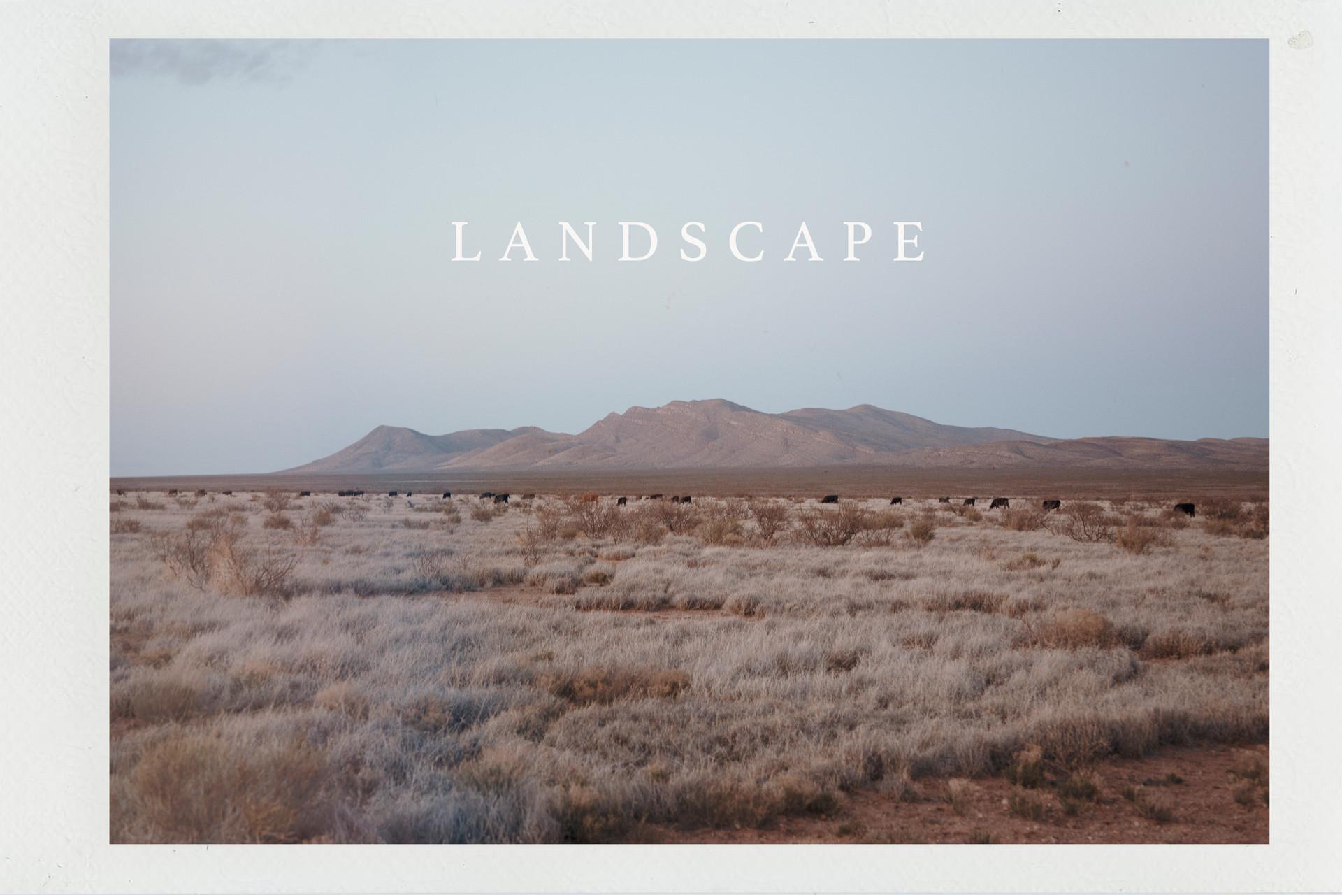 Landscape_rwd.jpg