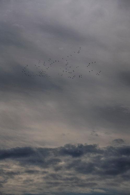 Cloud_07