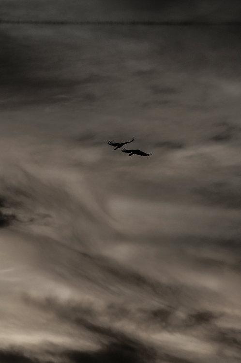 Cloud_12