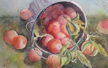 Peachy Keen.jpeg