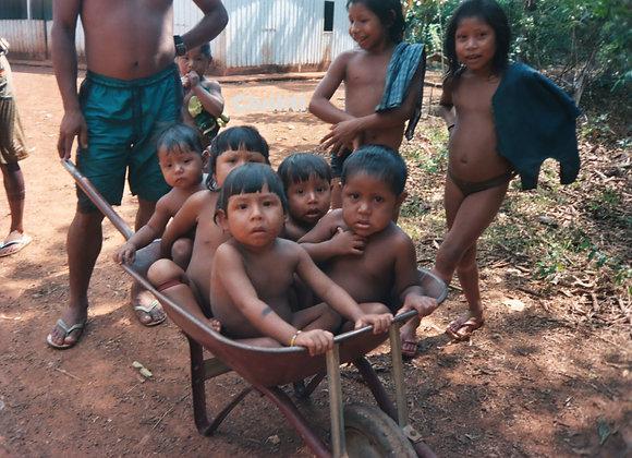 Kayapo Children In Wheelbarrow Village Of Aukre Southern Amazon Basin