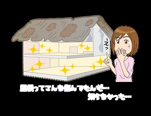 屋根劣化イメージ04001.png