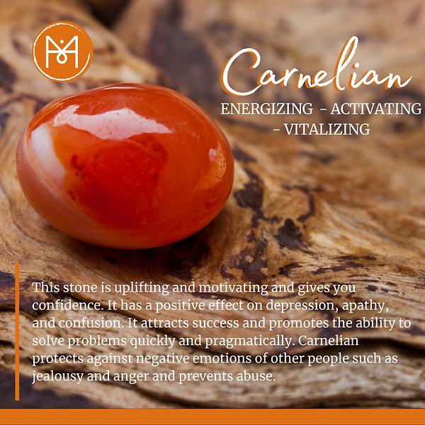MFMF_ Carnelian.png