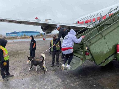 Historic plane's final trip takes champion sled dogs to Norway, via NWT