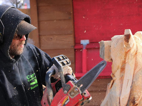 Chainsaws and cheer: A day with an outdoor wood carver at Winterlude