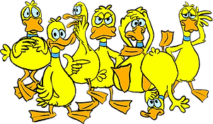 box front flock.png