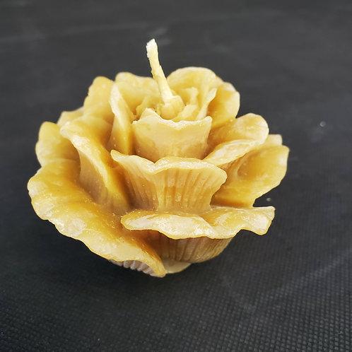 Small Rose Flower