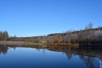 L'étang et sa cabane au loin