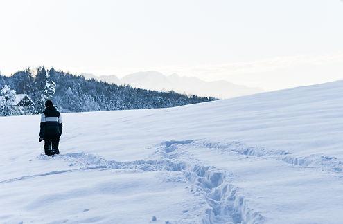 Valerie Hammacher photographer Foto Photography Nature Snow