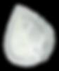 GracefullyBirthed_Logo-LEAF.png