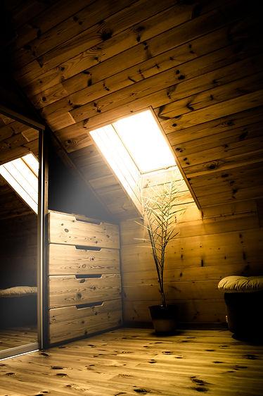 wooden loft interior with skylight in de