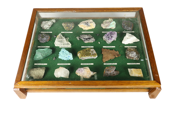 Case with geological specimens