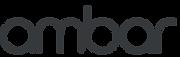 Logo-Ambar-Negativo.png