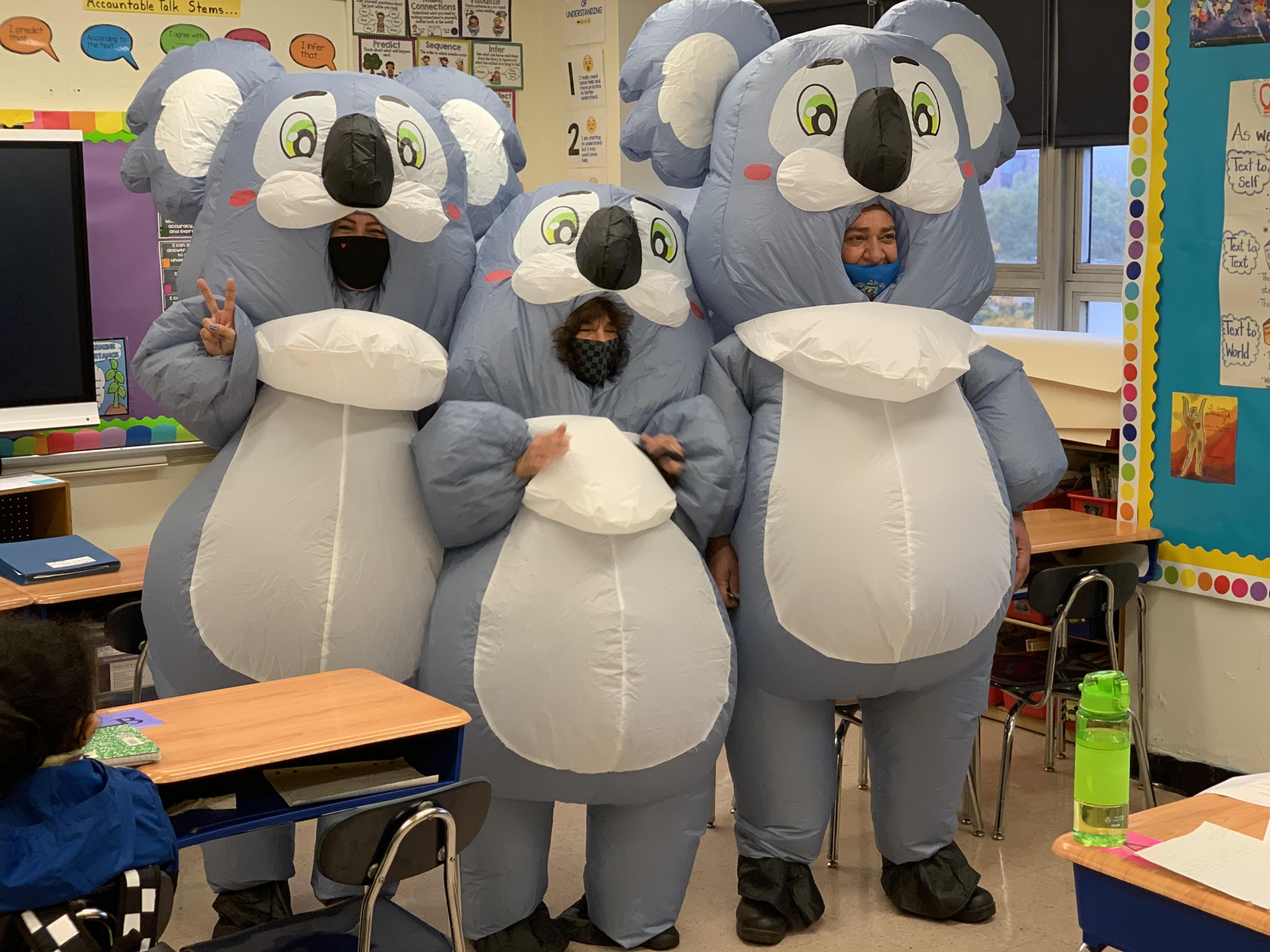 School mascots
