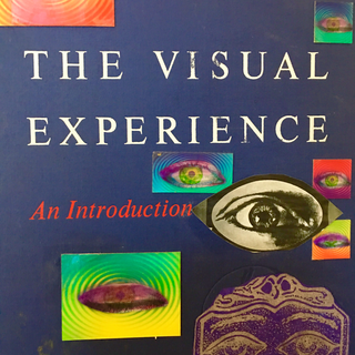 Vision- Altered Book