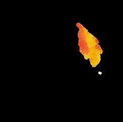 L2.png