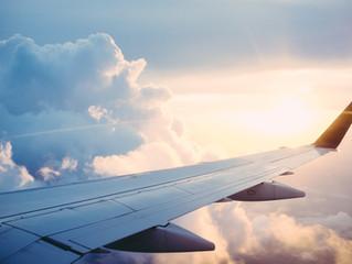 An Unforgettable Flight with a Faithful Friend