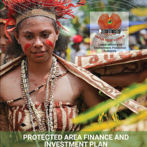 New Natural Strategies investment plan published by UNDP!