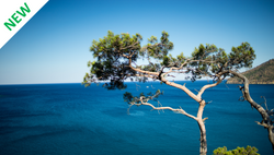 Financing Nature-based Solutions in the Mediterranean