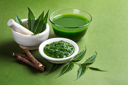 medicinal-neem-leaves-mortar-pestle-with