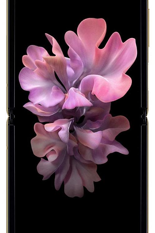 Samsung Galaxy Z Flip (Gold, 8GB RAM, 256GB Storage) with No Cost EMI/Additional