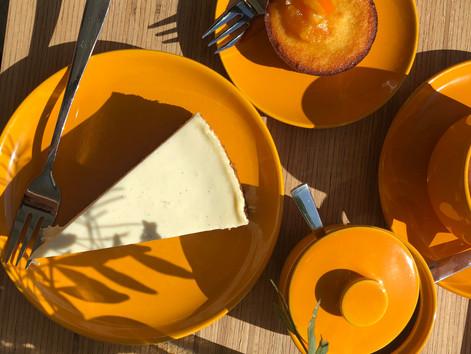 Tag 61-75: Corona, Kuchen und das Ladenlokal