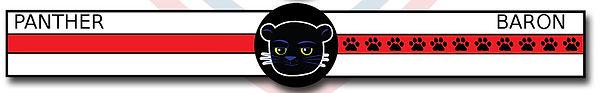 panther_belt.jpg
