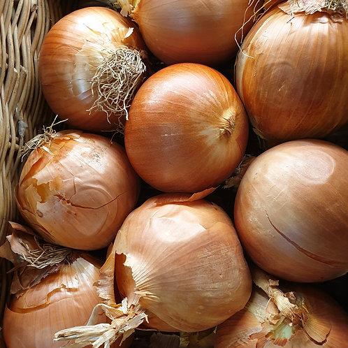 Mild Onions 1kg