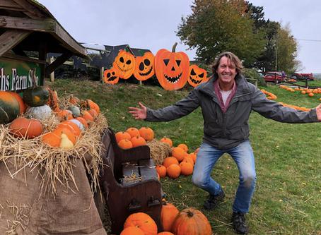 Northampton farm opens its field for spooky pumpkin pick your own fun