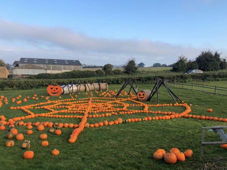 Pumpkin farmer pimps up Halloween to boost families across Northants