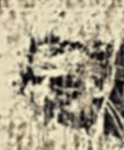 JAY1 (9).jpg