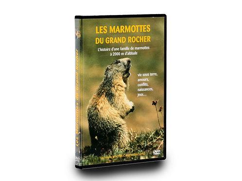 Les Marmottes du grand Rocher
