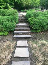 Stairway & Stepping Stones