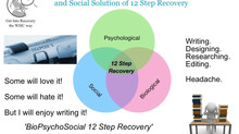 BioPsychoSocial 12 Step Recovery