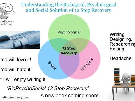 BioPsychoSocial 12 Step Recovery