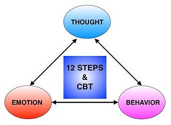WISC 12 steps & cbt