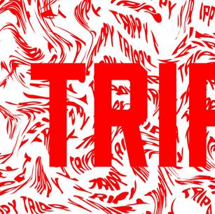 trippy-01_edited_edited.png