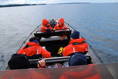 Whale Watching Tour Vancouver Island